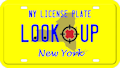 New York license plate search